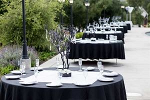 Fontainebleau Events