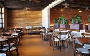Meso Maya Restaurant