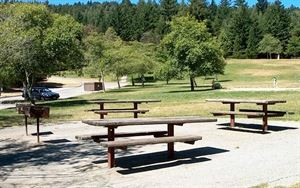 Huddart County Park