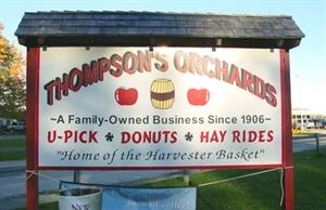 Thompsons Orchard