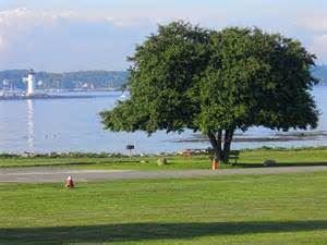 Great Island Common