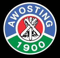 Camp Awosting for Boys