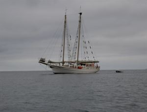 Schooner Tiama Sailing Adventures