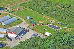 Marini Farm Corn Maze