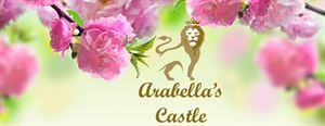 Arabella's Castle