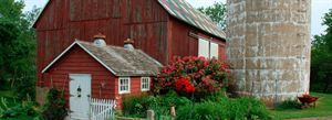 Blue Horse Farm
