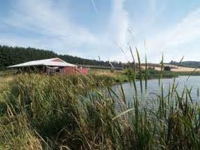 Unger Farms