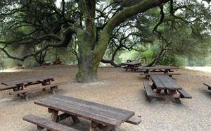 Ragle Ranch Regional Park