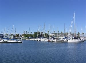 Sequoia Yacht Club