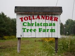 Tollander Tree Farm