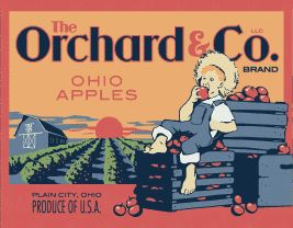 The Orchard & Company