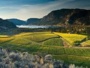 Blue Mountain Vineyards & Events