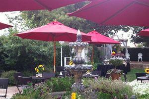 Jennifer's Terrace