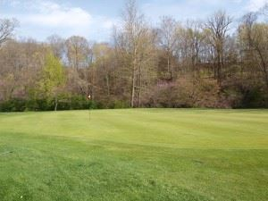 Harrison Park Golf Course
