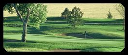 Ptarmigan Country Club