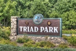 Triad Park