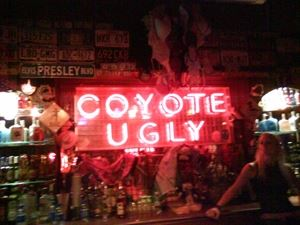 Coyote Ugly Saloon Tampa