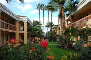 Best Western - Palm Court Inn